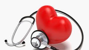 lactancia baja el riego cardiovascular