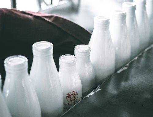 Lácteos y lactancia materna: un binomio perfecto